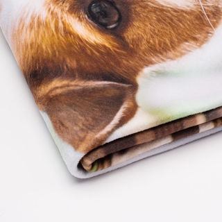 folded pet blanket