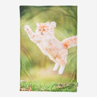 fleece cat blanket