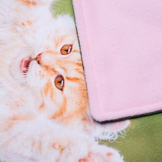 pink back of pet blanket