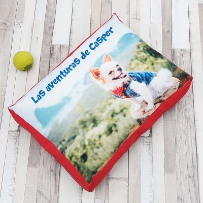 cama para perros personalizada