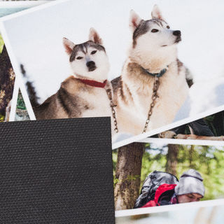 Fußmatte mit Haustieren