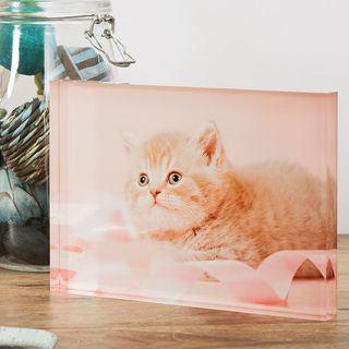 Acrylfoto selbst gestalten Katze