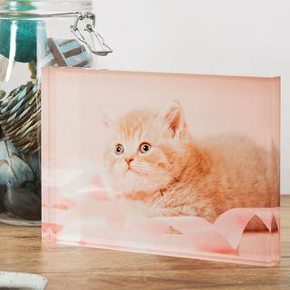 acrylic block photo gift with cat