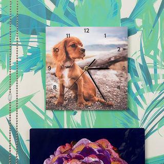 cocker spaniel photo clocks against green tropical wallpaper