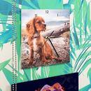 Orologio da parete personalizzati cane cucciolo