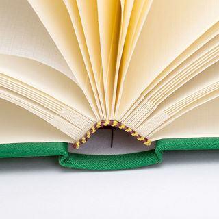 Libro vida páginas