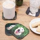 Dessous de verre personnalisé avec photo chien