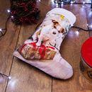 Dog christmas Stocking design presents