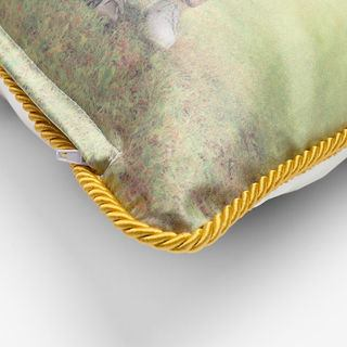 close up of silk cushions showing rope braid trim detail and discreet zip