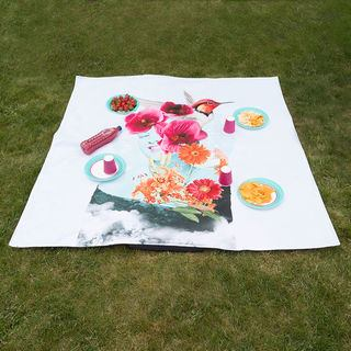 Picnic Blanket pattern surface with waterproof side
