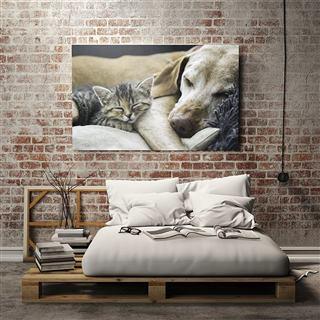 Tableau photo personnalisé avec photo de chien