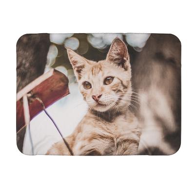 Designa husdjursfilt