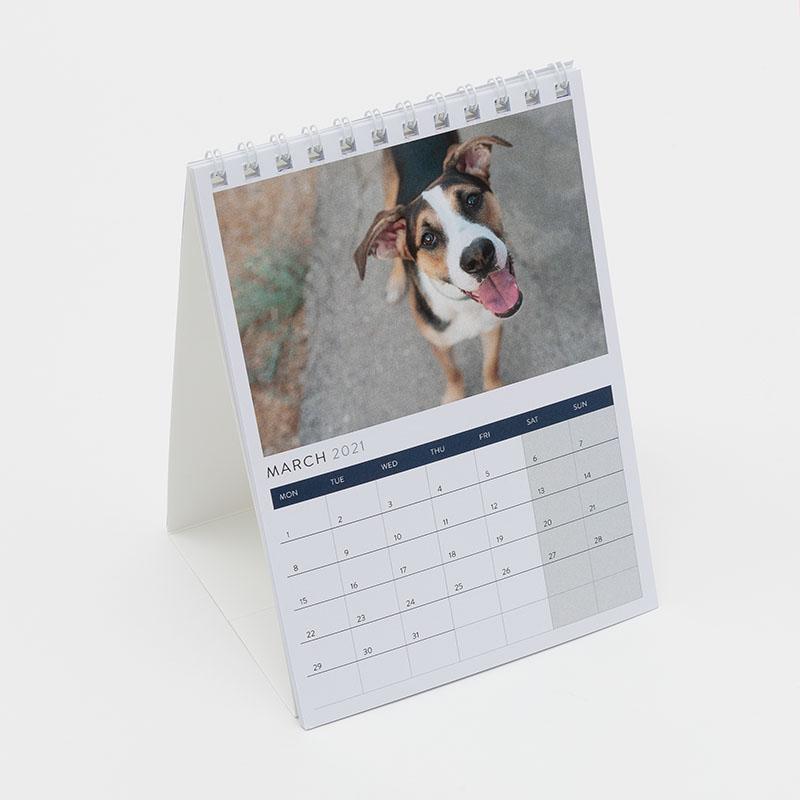 Border Terrier in Jumper A6 Postcard